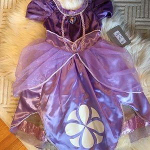 Disney Store Princess Sofia Dress / Costume
